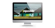 Impendulo Launches New Website