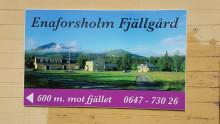 Flora, fåglar och fjällvett – följ med på en oförglömlig fjällkurs i Jämtland 20–27 juli
