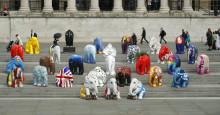 Concours d'éléphant