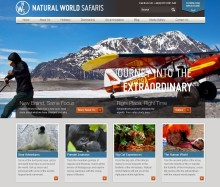 Sitecore and ClerksWell help Natural World Safaris to successfully navigate the digital marketing jungle