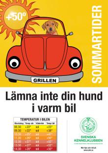 Hund i varm bil – miniposter