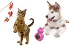 Kattvippor och tuggleksaker är mest poppis som aktiveringsleksaker