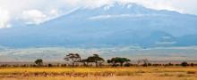 Järnvattnet goes Africa