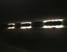 Vättlefjäll flyttar in på Fjäderharvsgatan – Välkommen på invigning av ny ljuskonsttunnel med ljud!