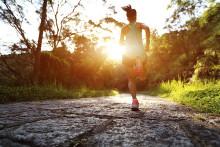 Internationalt triatlon kommer til Trekantområdet
