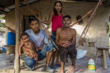 Ny FN klimarapport: Skoven og dens folk er afgørende i klimakampen