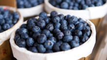 Vad ska vi äta egentligen? En ny kurs inom kost och hälsa hos Folkuniversitetet i Umeå