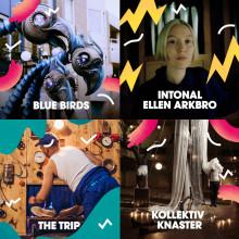 Futuristiska fåglar och horisontell resa när Malmöfestivalen släpper höjdpunkter ur årets kulturprogram