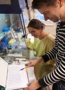 Finmaskig diagnostik av genmutationer banar väg för effektivare cancerbehandling