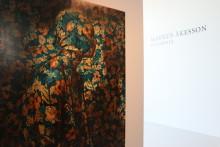 Markus Åkessons Insomnia har öppnat på VIDA Museum & Konsthall