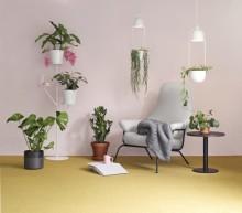 Thomas Sandellin Plantagenille suunnittelemilla designtuotteilla lisää vehreyttä ja viihtyvyyttä kotiin