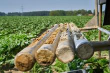 Bayernwerk beginnt mit Bodenuntersuchungen für Anschluss Bachl