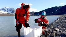 Arktisk mikroplast i bottenlevande djur under lupp