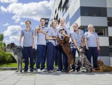 Veterinærene - ny serie fra Norges beste dyrehospital