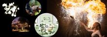 Förbo bjuder in till ljusfest för att skapa dialog kring den nya aktivitetsparken