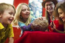 Dinosaurier och spännande ägg! Det händer på Naturhistoriska riksmuseet i april.