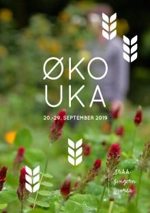 Snart Økouka over hele landet!