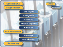 Streamline your sequencing workflow – NGS with Hamilton