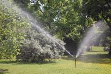 Slik vanner du plantene i ferien!