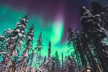 Handel unterm Nordlicht - warum die Nordics maßgeschneiderter Konzepte bedürfen. PIM-Consult beim bevh-Ländertag.