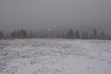 Så falder den første sne i Sverige