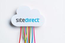 Connector Microsoft Dynamics AX (Axapta) och SiteDirect e-handel