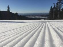 Fremdeles flott vinter i Oslo!