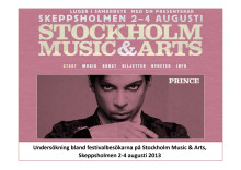 Rapport: Music And Arts festival 2013