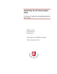 Rapport: studie om systerskap för att främja tjejers psykiska hälsa