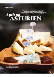 """Artikel """"Aptit på Asturien"""""""