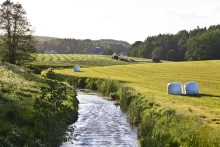 Kunskap ska underlätta balans mellan mål för vattenmiljön och ökad jordbruksproduktion