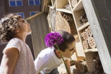 Odla staden: Barn behöver naturen i staden