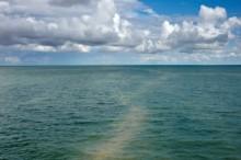 Ny uppskattning av Östersjöns biologiska pump