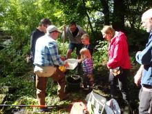 Aktiviteter runt om i Skåne på Lokala naturvårdens dag 25-26 augusti