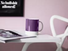 MATCHGUIDE från Caparol - Nya inspirationsmiljöer för aktuell och hållbar färgsättning inomhus