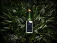 Äntligen lanseras ett kallbryggt matcha te på den svenska marknaden