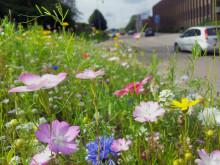 Miljömål – för ett gott liv i Partille nu och i framtiden