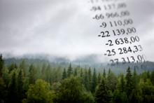 Extra nyhetsbrev Skog - stormfälld skog