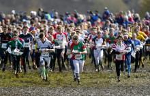 Orienteringstävling gav 13 miljoner till Östra Göinges näringsliv