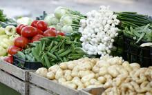 Pengar till informationsinsatser för att utveckla korta livsmedelskedjor