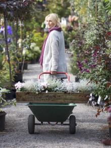 Dags att plantera med Victoria Skoglund