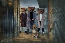 Teddybears avslutar Grönans konsertsommar