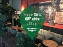 Nu öppnar Wayne's Coffee i Vetlanda – av den yngsta franchisetagaren i kedjans historia