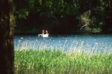 Stora mängder PCB i Oxundasjön