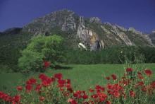 TERRES DE LLEIDA: Terrengsykkelruter og Montsec Astronomical Park