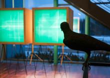 Taide ilahduttaa ja inspiroi työpaikalla – Tuija Teiskan ja Federico Ortegónin taidenäyttely Kiillossa