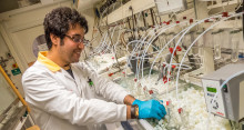 Breakthrough for magnesium lightweight materials