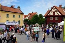 Almedalsseminarium  i Göteborg: Så lyckas ni på Sveriges största opinionsarena