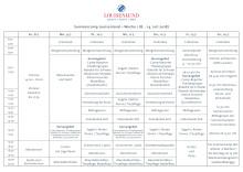 Ablaufplan des Louisenlunder Summercamps 2018