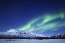 Danskerne nu under 2,5 time fra Europas sidste vildmark